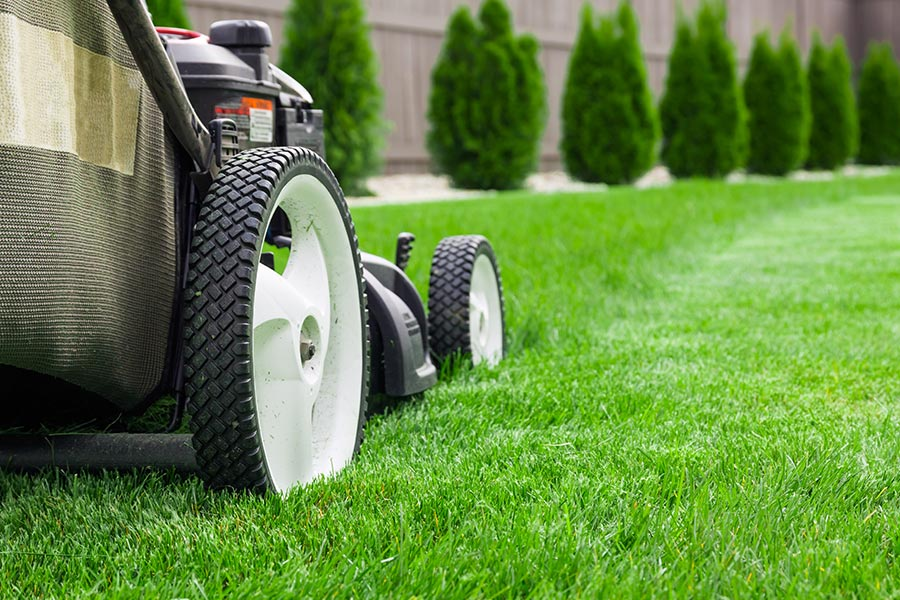 Wirral Lawn Care